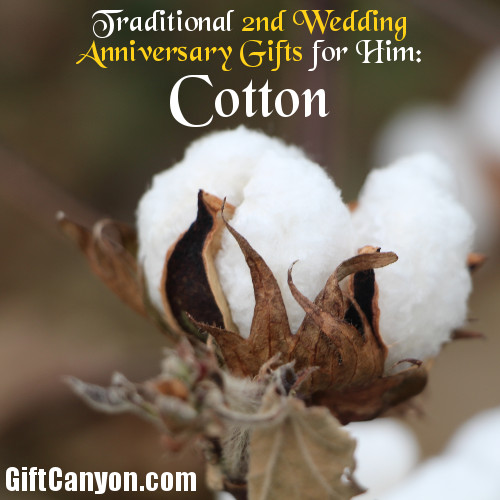 Traditional 2nd Wedding Anniversary Gifts for Him: Cotton - Gift ...