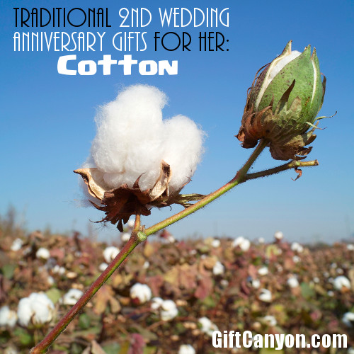 2nd wedding anniversary cotton gifts for her