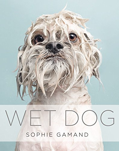 Wet Dogs + More Book White Elephant Gift Ideas