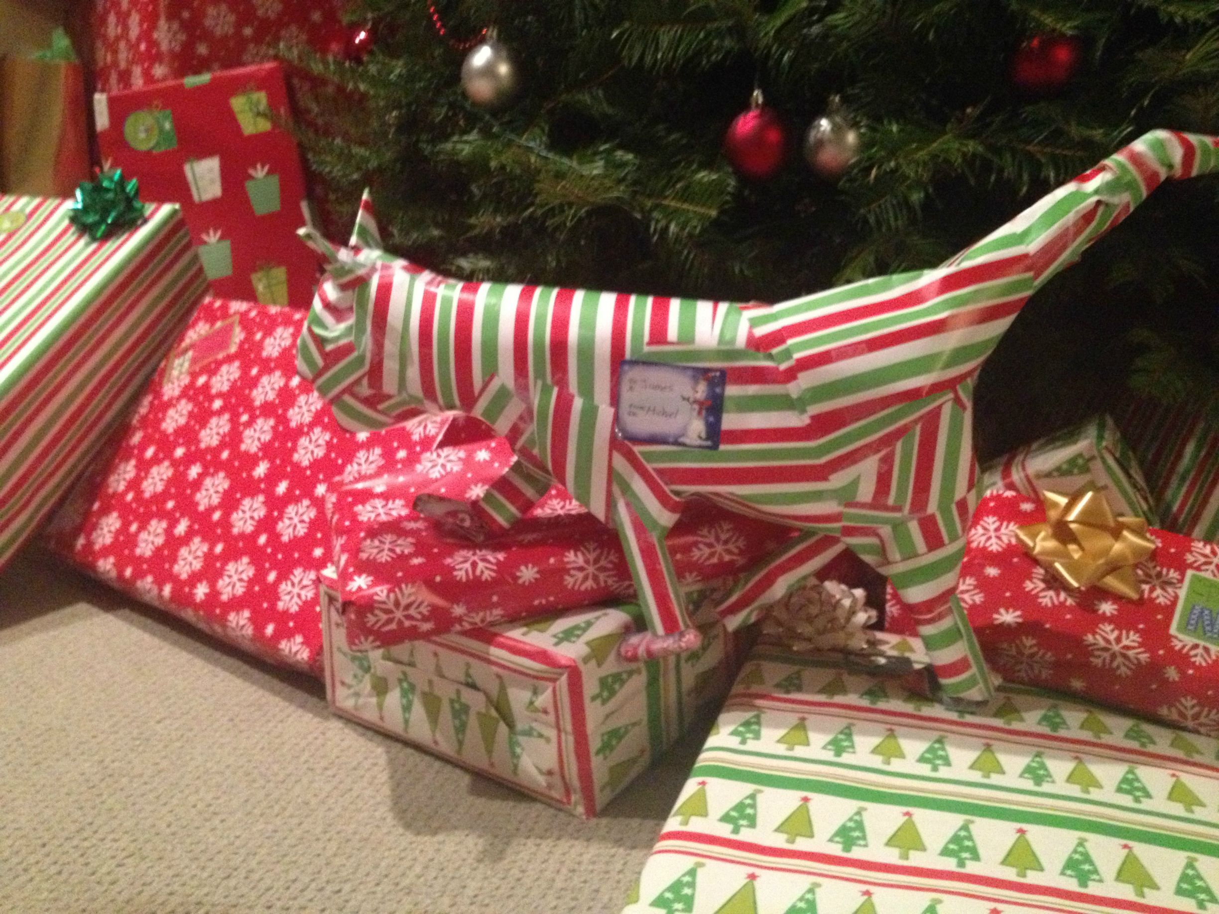Wrapping Gift Card into a Cat and More Ourageous Gift Wrapping Ideas