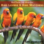 Gift Ideas for Bird Lovers and Bird Watchers