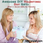 Awesome DIY Valentines Day Gifts [Part 3: Seven Gifts for Friends]