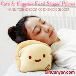 Cute, Soft, Huggable Food-Shaped Pillows to Make Your Bedroom or Sofa Look Delicious!!