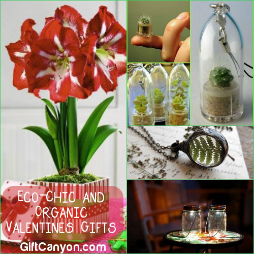 Eco-Chic and Organic Valentines Day Gifts for Anyone