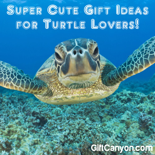 Super Cute Turtle Gift Ideas for Turtle Lovers