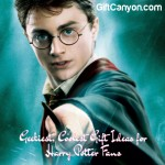Geekiest, Coolest Gift Ideas for Harry Potter Fans
