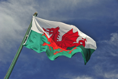 This is the official flag of Wales. The red dragon is a huge symbol to St. David's Day, to the fact that you will see it on shirts, jewellery and other accessories