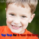 Top Toys for 5 Year Old Boys for 2016