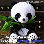 Panda-Themed Gift Ideas for Panda Lovers