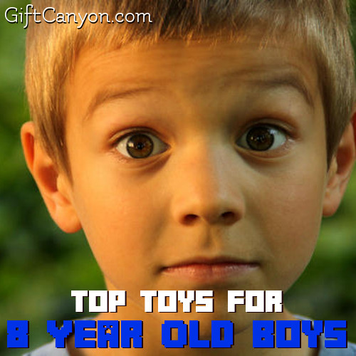 Top Toys for 8 Years Old Boys