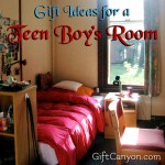 Gift Ideas for a Teen Boy's Room