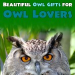 Beautiful Owl Gifts for Owl Lovers