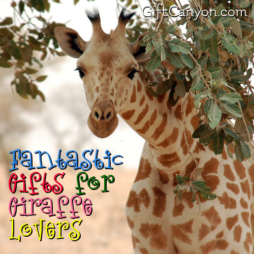 fantastic-giraffe-gifts-for-giraffe-lovers