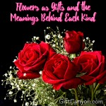 Flowers as Gifts and the Meanings Behind Each Kind