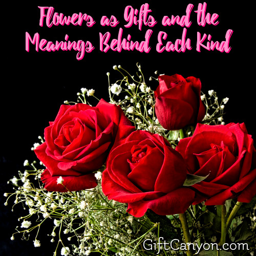 flowers-as-gifts-and-the-meanings-behind-each-kind