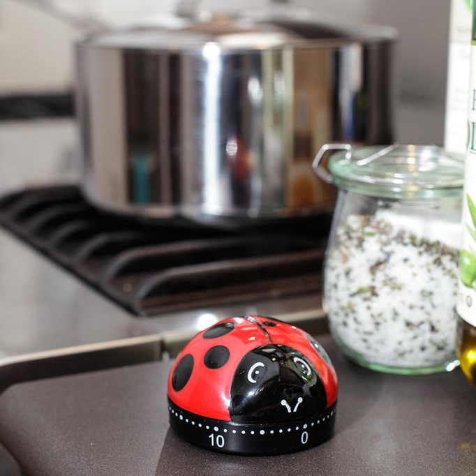 Lovely ladybug themed gift ideas for ladybug lovers gift Gifts for kitchen lovers
