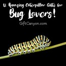 Twelve Amazing Caterpillar Gifts for Bug Lovers!