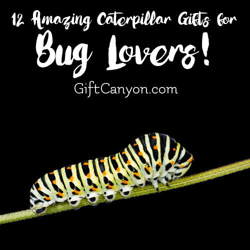 twelve-amazing-caterpillar-gifts-for-bug-lovers