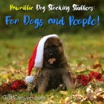 40 Pawriffic Dog Stocking Stuffers: For Dogs and People!