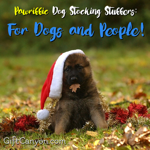 dog-stocking-stuffers