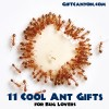 11 Cool Ant Gifts for Bug Lovers