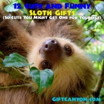 12 Cute and Funny Sloth Gifts (So Cute You Might Get One for Yourself)