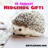 12 Coolest Hedgehog Gifts EVER!