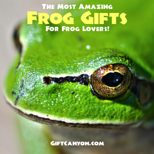 Most Amazing Frog Gifts for frog Lovers