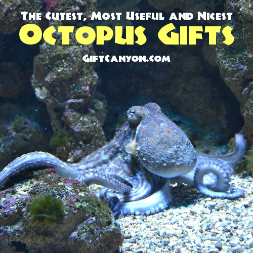 The Cutest, Most Useful and Nicest Octopus Gifts Ever