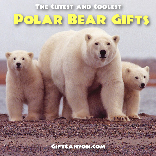 The Cutest and Coolest Polar Bear Gifts For Those Who Love Polar Bears, Of Course