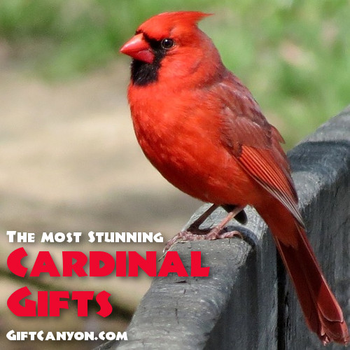 beautiful cardinal gifts