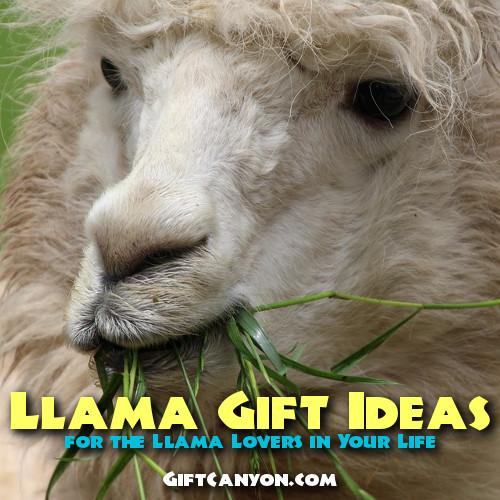 Llama gift ideas for llama lovers