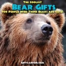 The Coolest Bear Gifts for People Who Think Bears are Cute!