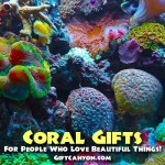 Coral Gifts for People Who Love Beautiful Things!