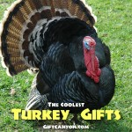 The Coolest Turkey Themed Gift Ideas!