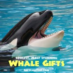 The Best Whale Themed Gifts! Ever!