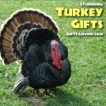 Superb Turkey Inspired Gift Ideas!